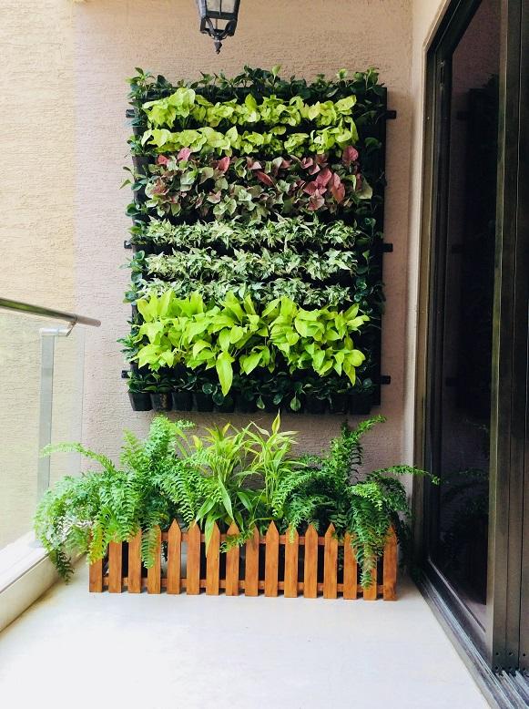 Garden wall bangalore