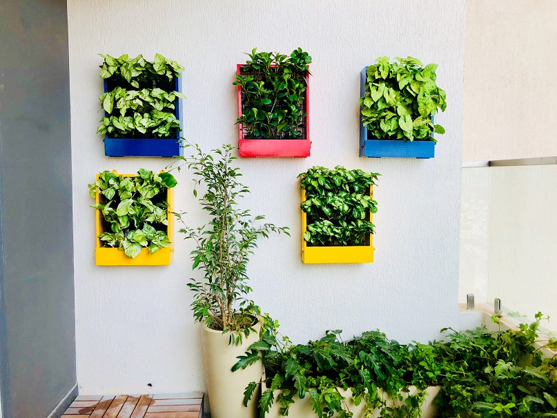 home vertical garden
