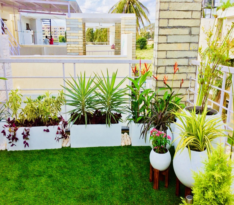 Terrace balcony garden