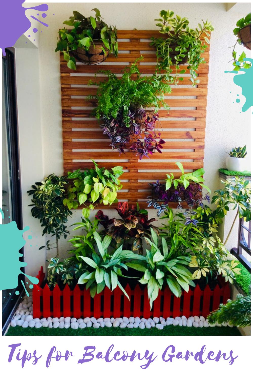 Balcony Garden Tips