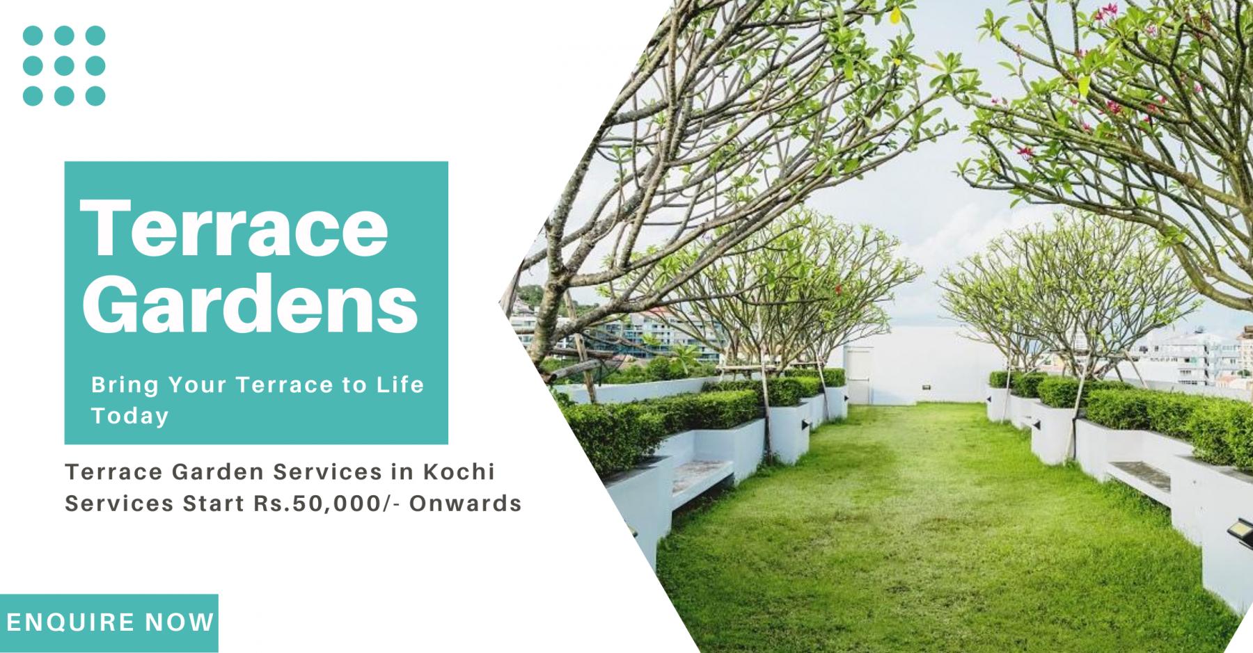 Terrace garden in kochi