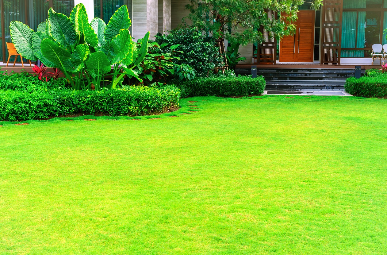 landscaping consultants in kochi