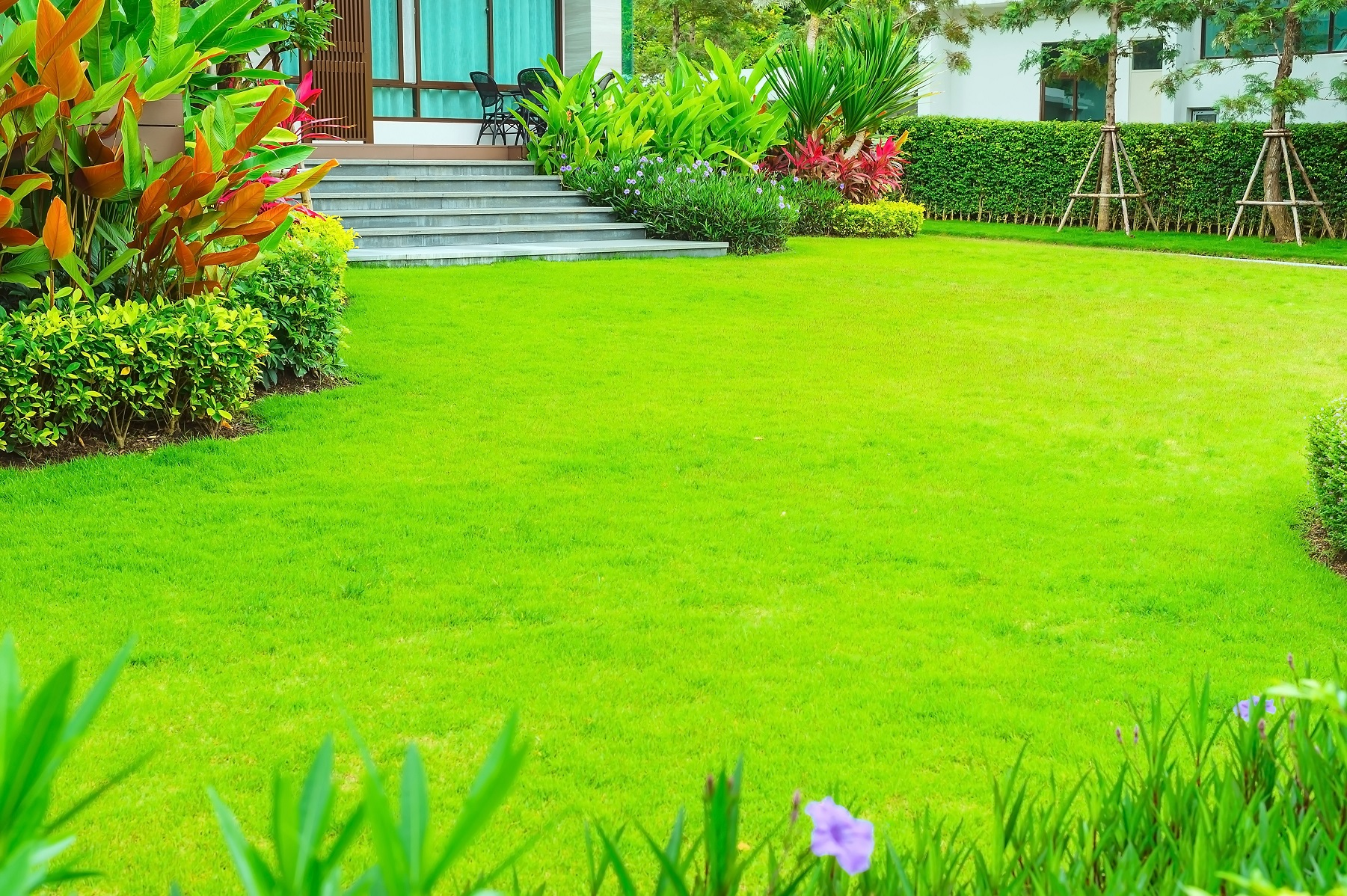 Landscaping for villas