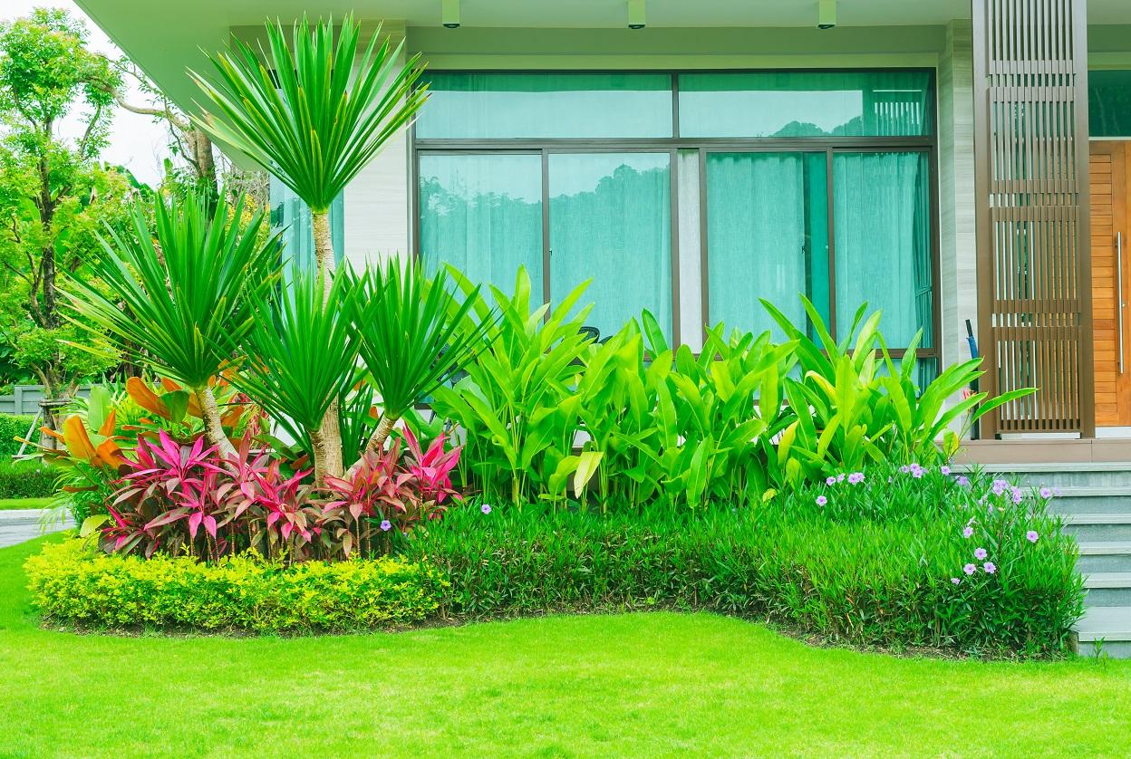 landscape consultants in kochi