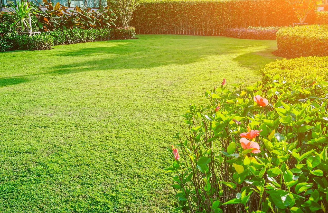 landscape designers in bangalore